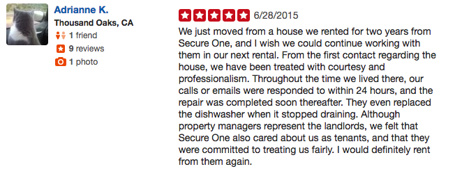 Yelp Review 8